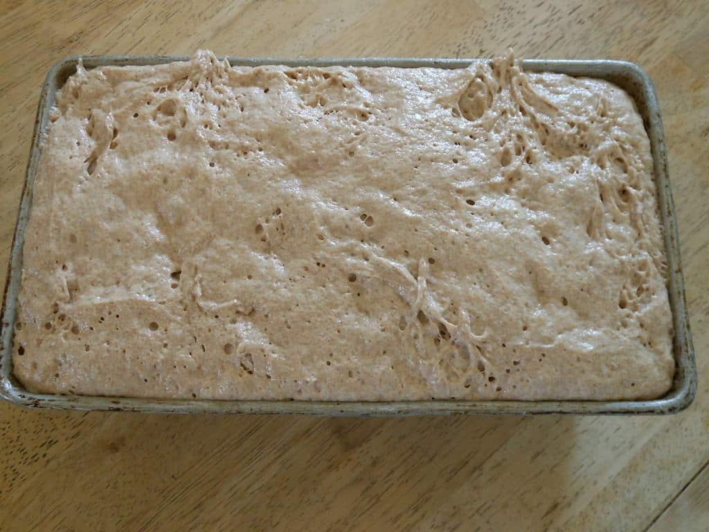 No Knead Whole Wheat Sandwich Bread