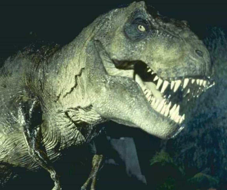 Tyrannosaurus rex sugar dish me for Tyranosaurus rex