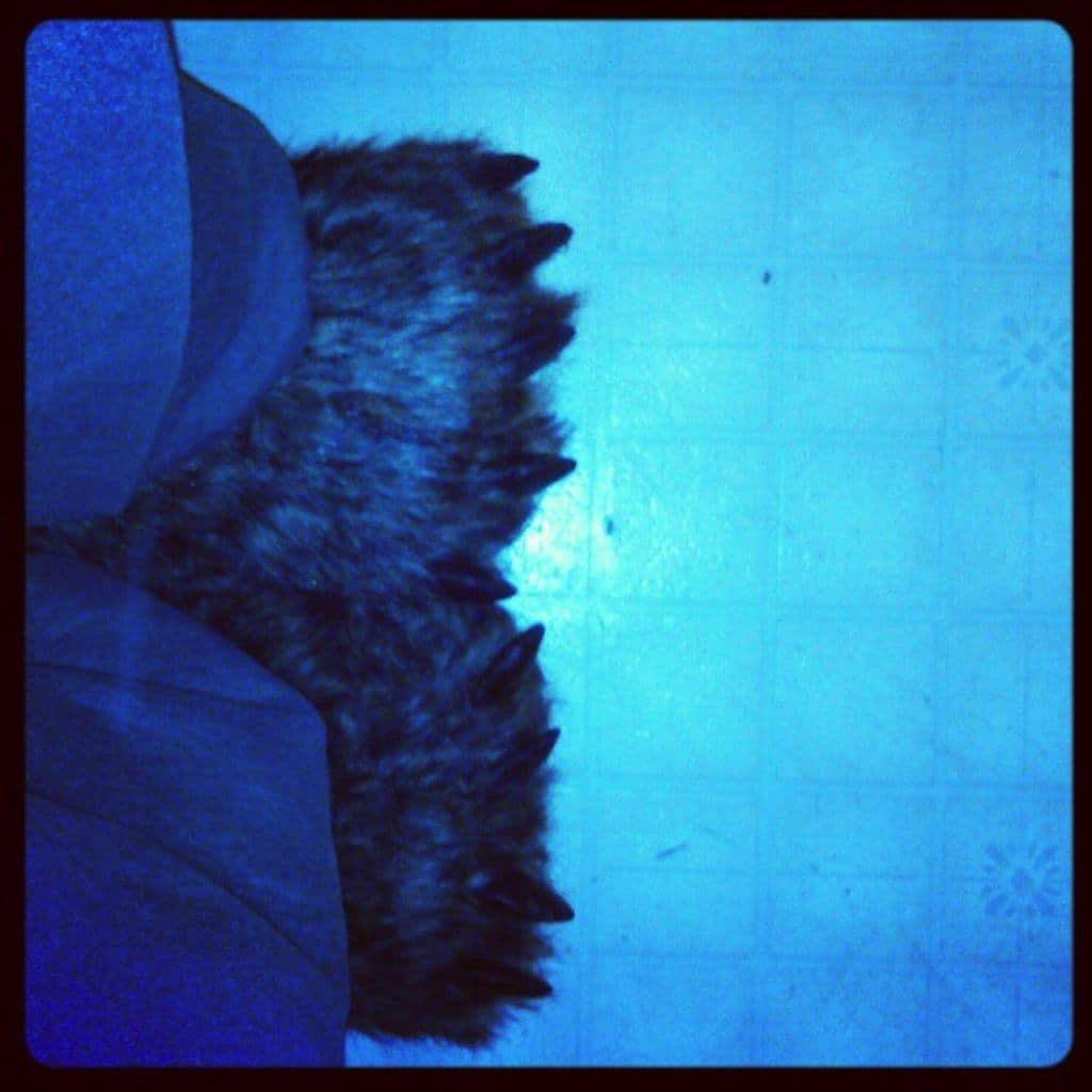awesome bear claw slippers