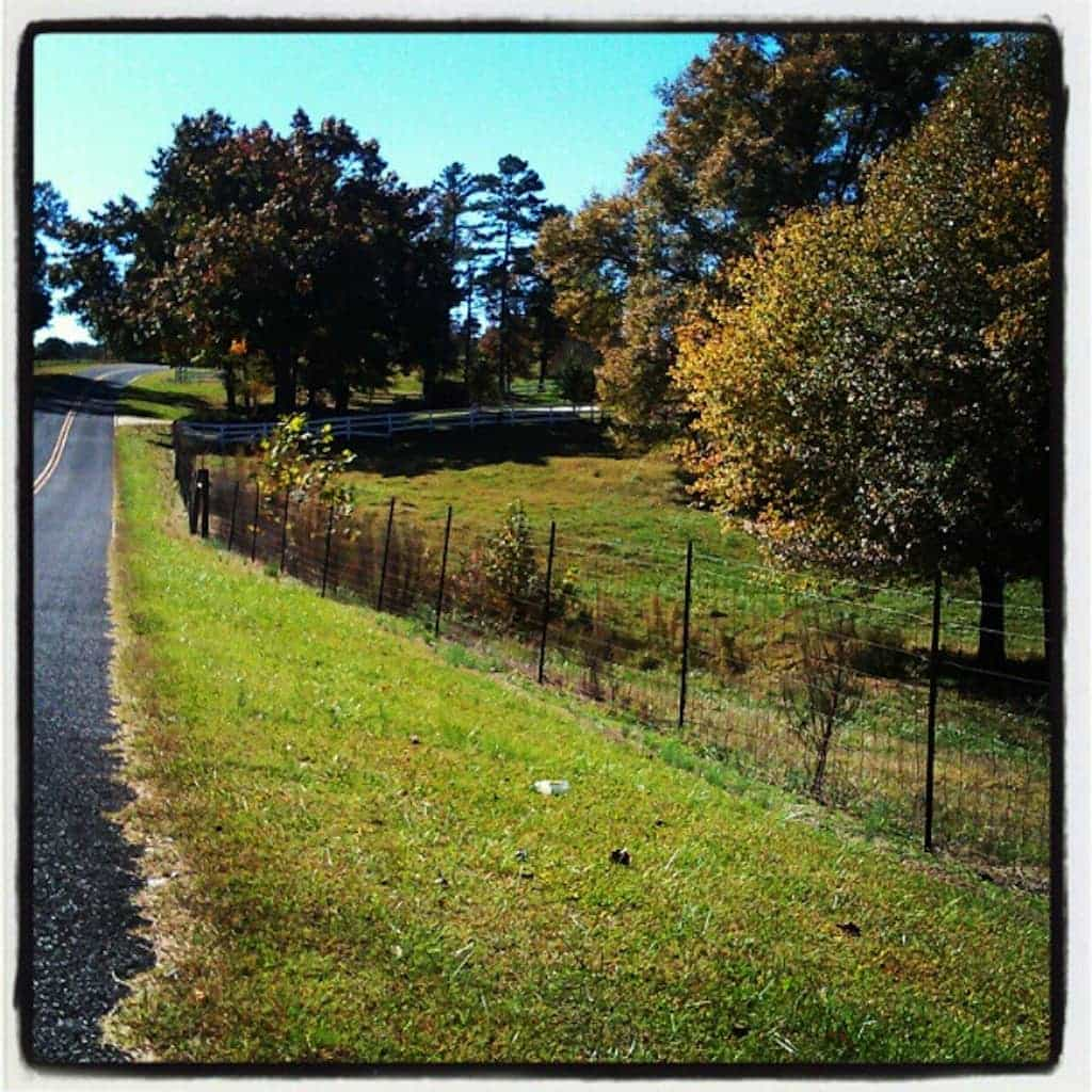 rural North Carolina; Manic Labor Day Monday