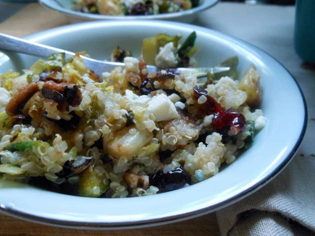 Warm Quinoa Salad with Brussels sprouts + Cranberries + Pecans