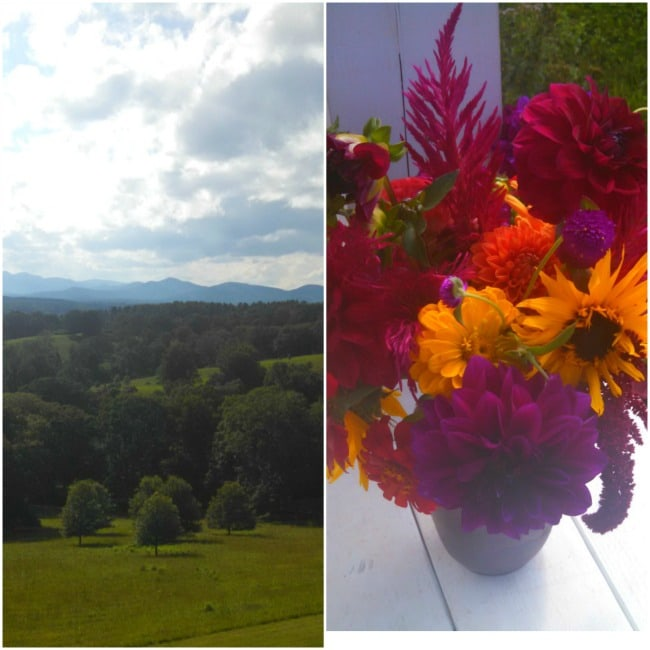 The View; FBF Asheville