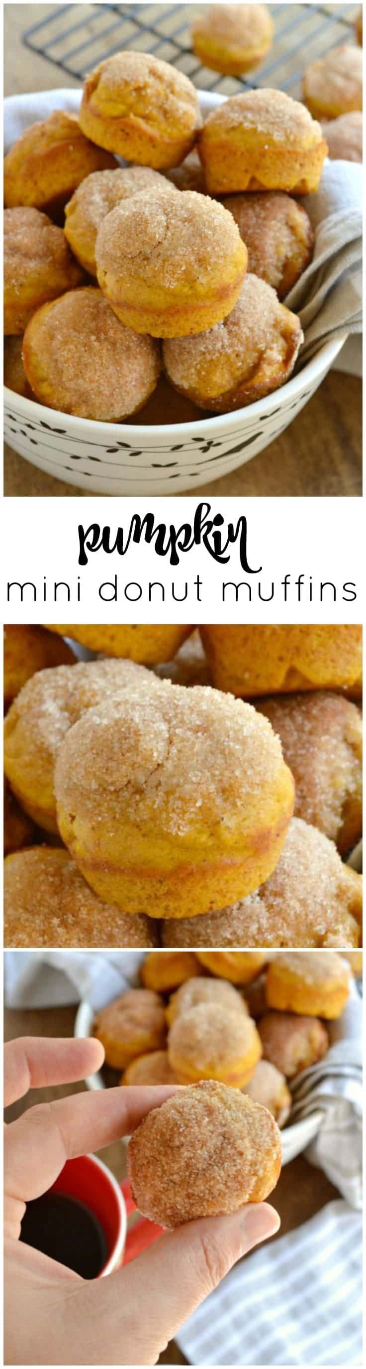 These Pumpkin Mini Donut Muffins are like baked donut holes that are brushed with butter and dipped in cinnamon sugar!