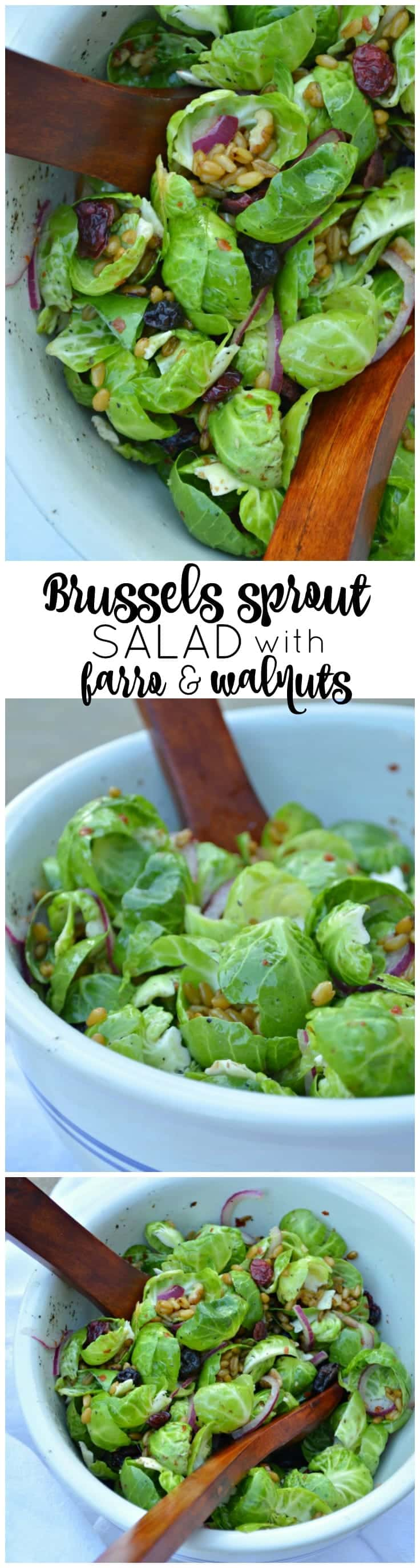 Brussels Sprout Salad with Farro and Walnuts is a crisp, fresh addition to your holiday table!