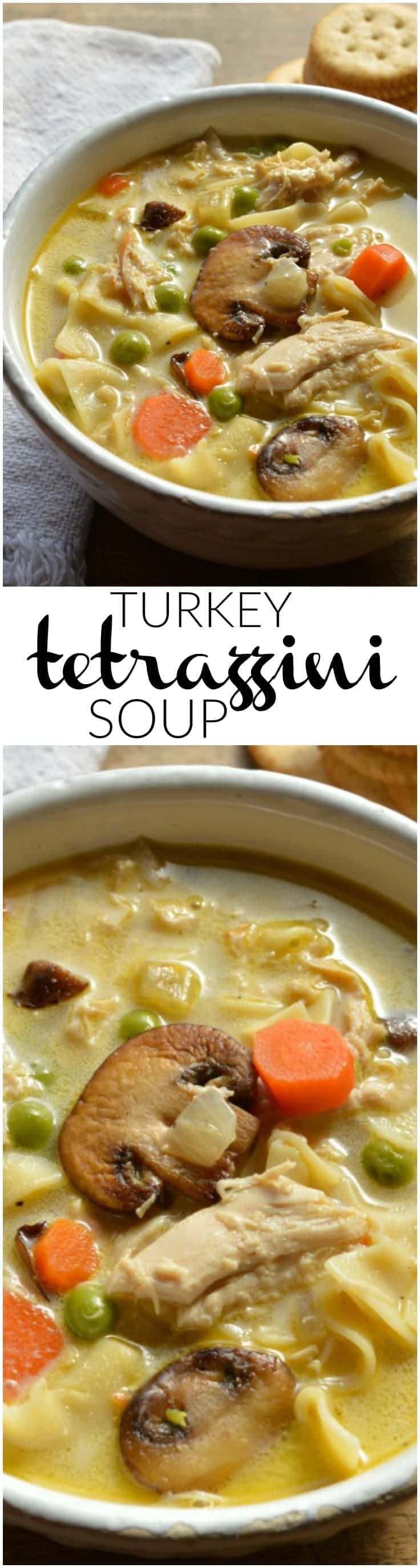 The perfect way to use up Thanksgiving leftovers! You can also make this Turkey Tetrazzini Soup with leftover chicken or rotisserie chicken