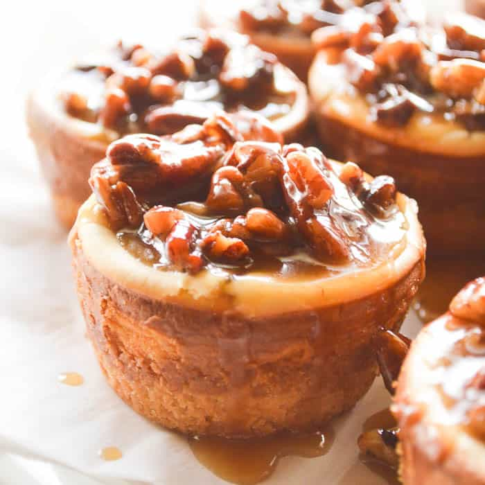 Square close up image of little spiced rum pecan cheesecakes
